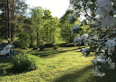Pokrova Omenapuutarha ja kanala